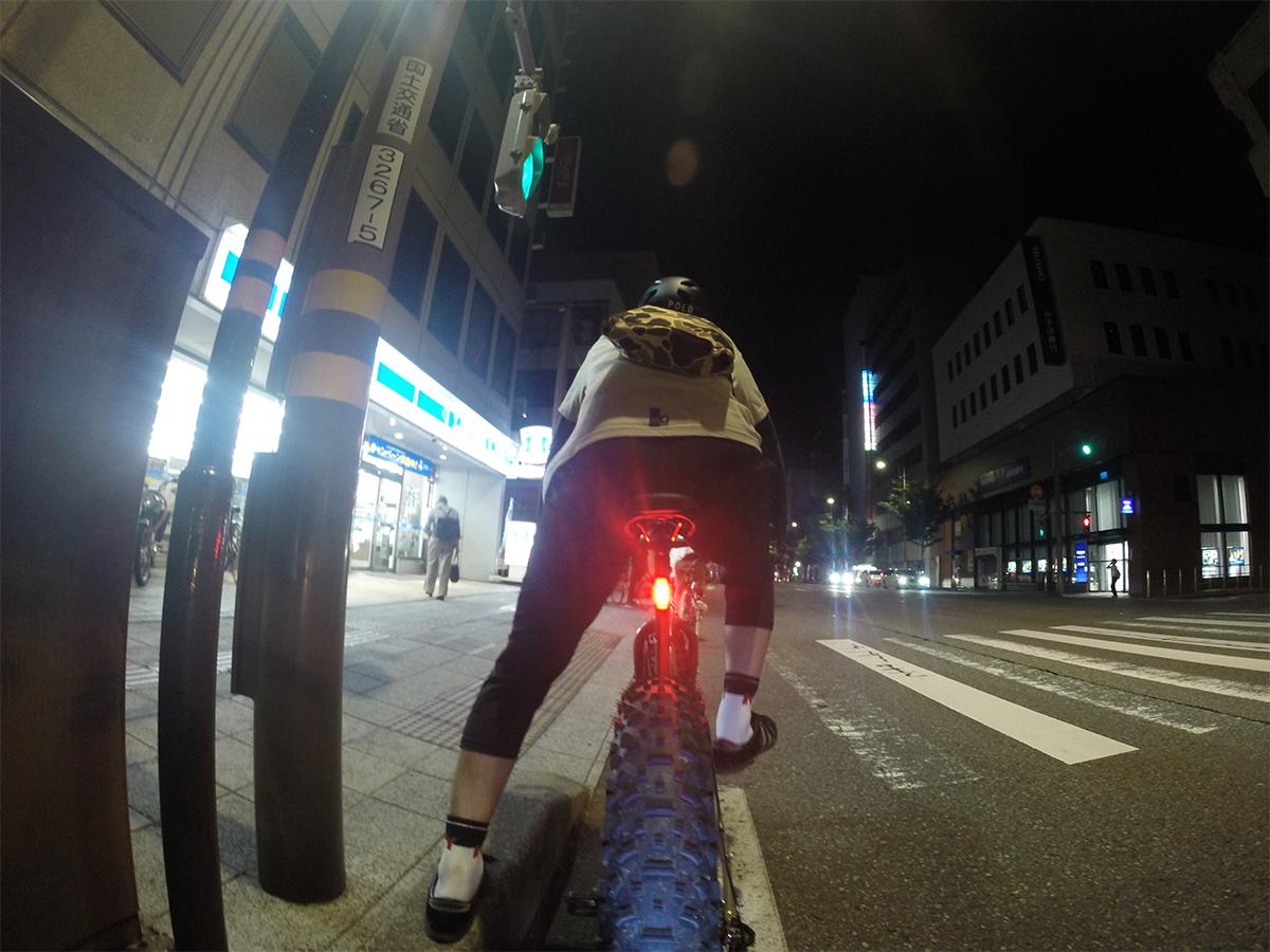 Surly Bikes / Moonlander