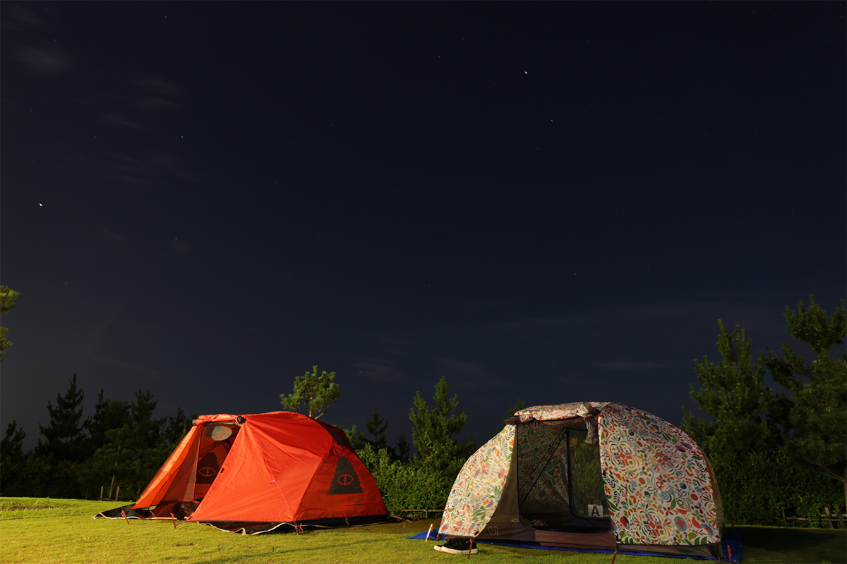 POLeR Tent with Star-filled night sky